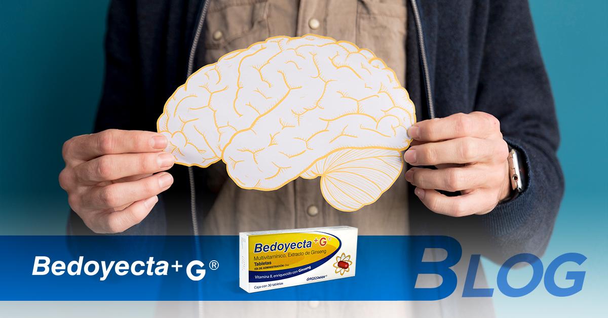 ¿Cómo funciona tu cerebro para concentrarse? Te explicamos este proceso